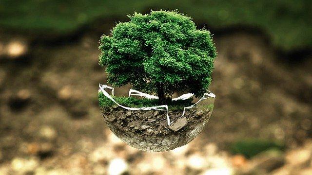 Jak snížit uhlíkovou stopu?